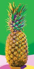 pineapplesmcmyk